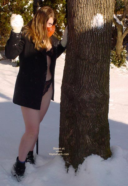 Pic #4 - *Ch Hope And Cassie Play In The Snow