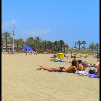 A Day At Barcelona Beach