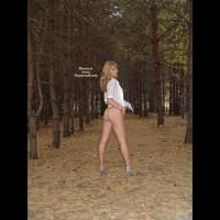 Woods Dance