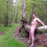 M* 3rd Contri,in The Woods Again!
