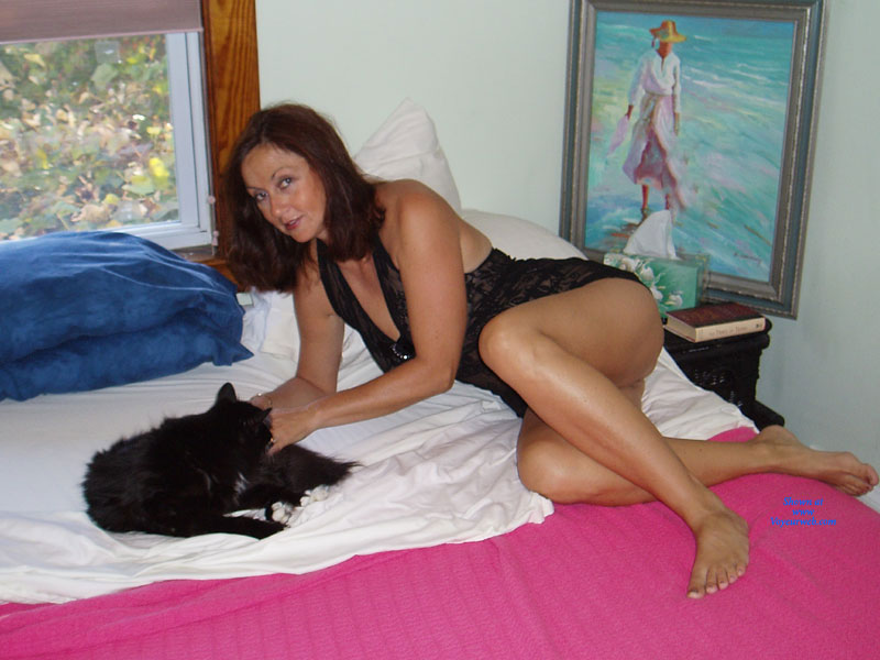 Pic #1 - Candi Annie Lounging Around With Her Pussy , Candi Annie Is ALWAYS Hot In Bed..this Time She Is Posing For A Few Sexy Photos For Husband Al.  What Do You Think Happens Next?!