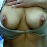 My Wife's Big Titties