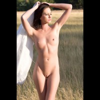 Nude Sexy Woman In Field - Dark Hair, Erect Nipples, Shaved Pussy, Small Breasts, Small Tits, Bald Pussy, Nude Amateur, Sexy Woman