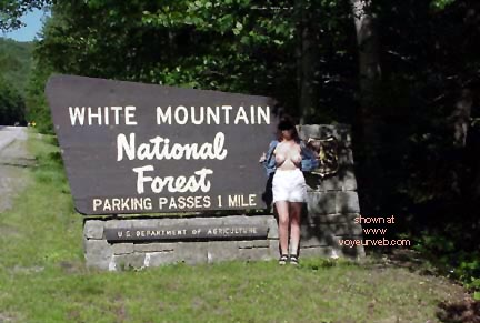 Pic #4 - Flash The White Mountain