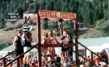 Pic #1 - Testicle Festival