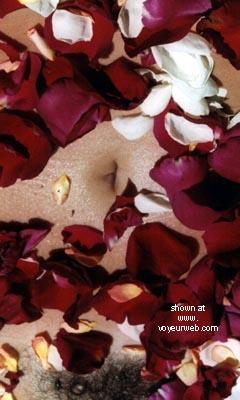 Pic #3 - Rose's Birthday Roses