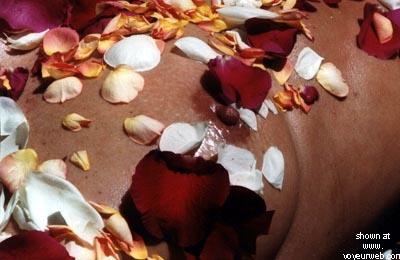 Pic #4 - Rose's Birthday Roses