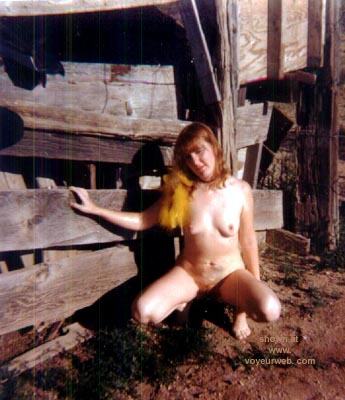 Pic #1 - Farm Wife