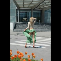 Windblown Skirt - Flashing, Sexy Ass