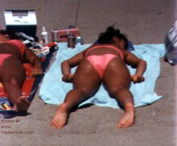 Pic #2 - Beauties      soakin up the sun..