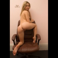 Rabbit On Leather Chair