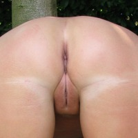 My wife's ass - my wife