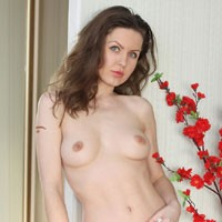 Nicole - VW Girl :) - Brunette Hair, Pussy Lips, Shaved, European And/or Ethnic