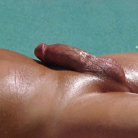 Shaved And/or Oiled