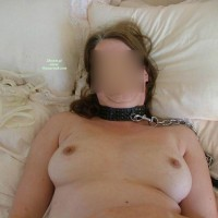 Collared And Leashed