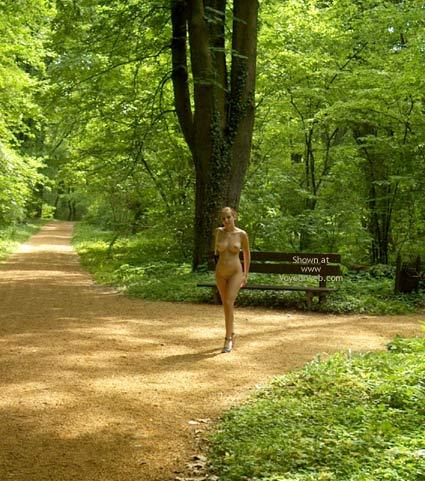 Pic #4 - Walk In Arboretum