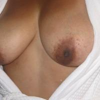 Medium tits of a neighbor - Sunny