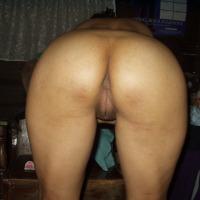My wife's ass - Philippine Kitten