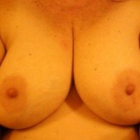 Large tits of a neighbor - honeysuckle