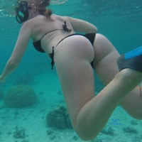 Wifes Ass While Diving Underwater in Moorea - Bikini, Water, Wet, Sexy Body, Sexy Figure, Wife/Wives