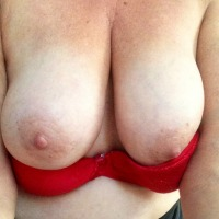 My large tits - oyster gal