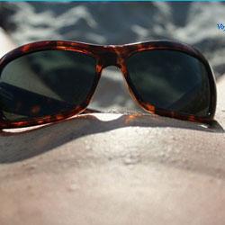 Oh How Good on Beach - Close-Ups