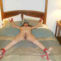 Tied While Naked On Bed - Artistic Nude, Bed, Brunette Hair, Firm Tits, Full Nude, Hairy Bush, Hairy Pussy, Hard Nipple, Naked In Bed, Nipples, Small Tits, Hot Girl, Naked Girl, Sexy Body, Sexy Figure, Sexy Legs, Sexy Woman, Wife/Wives