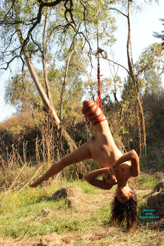 Pic #1 - Nelly and Shibari - Brunette Hair, Nude In Public , As Nelly Loves To Play With The Strings, Let's Play Around With It!