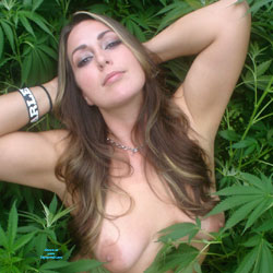 Big Tits In The Weeds - Big Tits, Brunette Hair, Exposed In Public, Firm Tits, Nipples, Nude In Nature, Nude Outdoors, Perfect Tits, Showing Tits, Hot Girl, Sexy Boobs, Sexy Face, Sexy Girl, Sexy Woman, Facials, Young Woman
