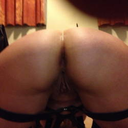 My wife's ass - Steph