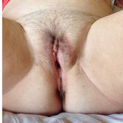 Furry Close Ups With Cream Pie - Close-Ups, Wife/Wives, Bush Or Hairy