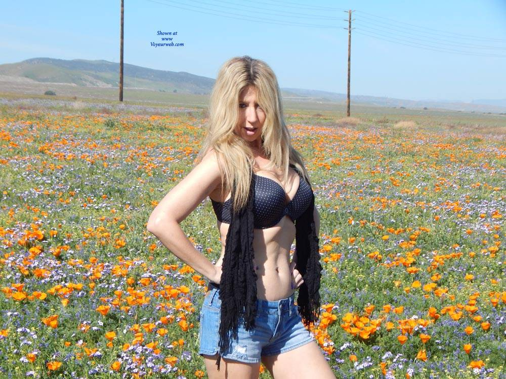 Pic #1 In The Poppies - Big Tits, Blonde