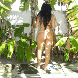 Selma Brasil - Brunette