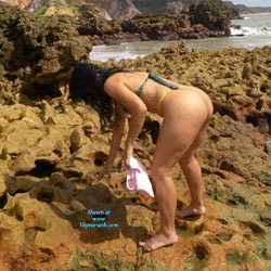 Selma Brasil In Coqueirinho Beach - Beach, Brunette