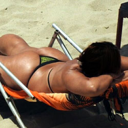 Asses From Janga Beach, Brazil - Beach
