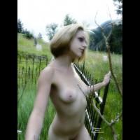 Yoing girl handjob gif