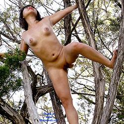 Naked Tree Climb - Brunette Hair, Nude In Public