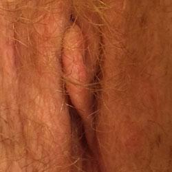 Close Up Kitty - Close-Ups, Pussy, Bush Or Hairy