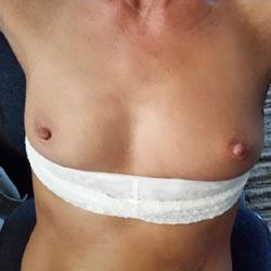 Sugar - Medium Tits