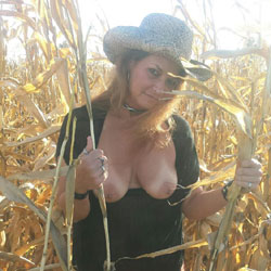 Corn Daze - Big Tits
