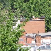 From My Balcony 3