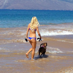 Walking The Dog - Brunette, Outdoors, Bikini Voyeur, Beach Voyeur