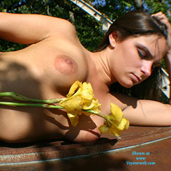 Roof Flowers - Brunette, Outdoors