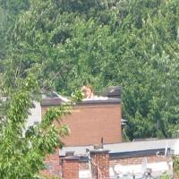 From My Balcony 5