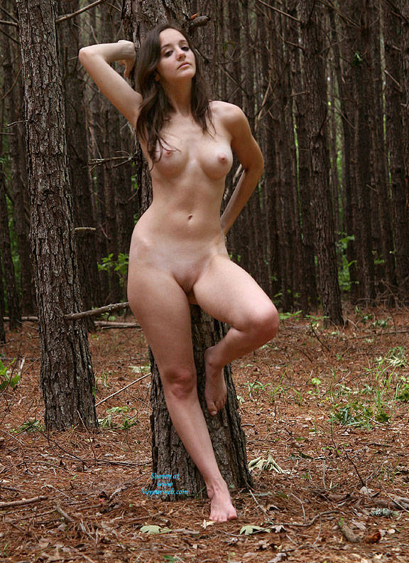 Naked At The Pine Tree - Brunette Hair, Exposed In Public, Firm Tits, Full Frontal Nudity, Full Nude, Hard Nipple, Naked Outdoors, Nipples, Nude In Nature, Perfect Tits, Shaved Pussy, Showing Tits, Hot Girl, Naked Girl, Sexy Body, Sexy Boobs, Sexy Face, Sexy Feet, Sexy Figure, Sexy Girl, Sexy Legs, Sexy Woman , Outdoor, Nature, Brunette, Big Tits, Nipples, Shaved Pussy, Sexy Legs