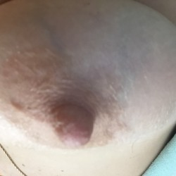 My medium tits - Pamela D