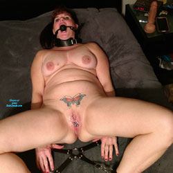 Lisa Tied Up - Big Tits, Toys, Shaved, Amateur, Tattoos, Body Piercings