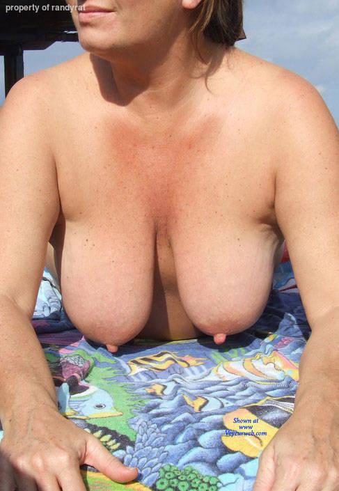 Succulent tits