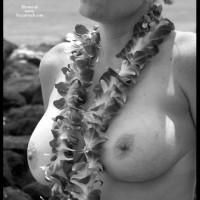 Tonya Is Nude