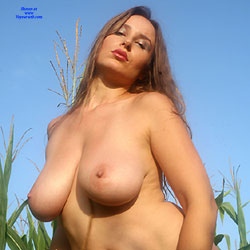 Sunrise Corn Curves - Nude Amateurs, Big Tits, Brunette, Outdoors, Bush Or Hairy